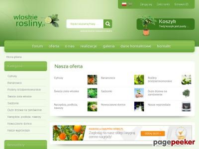 cytrusy.com.pl
